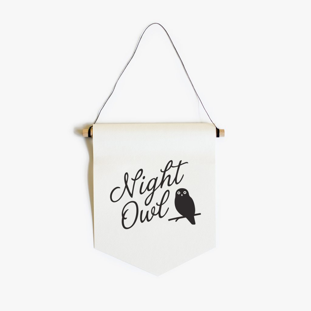 night owl paper flag
